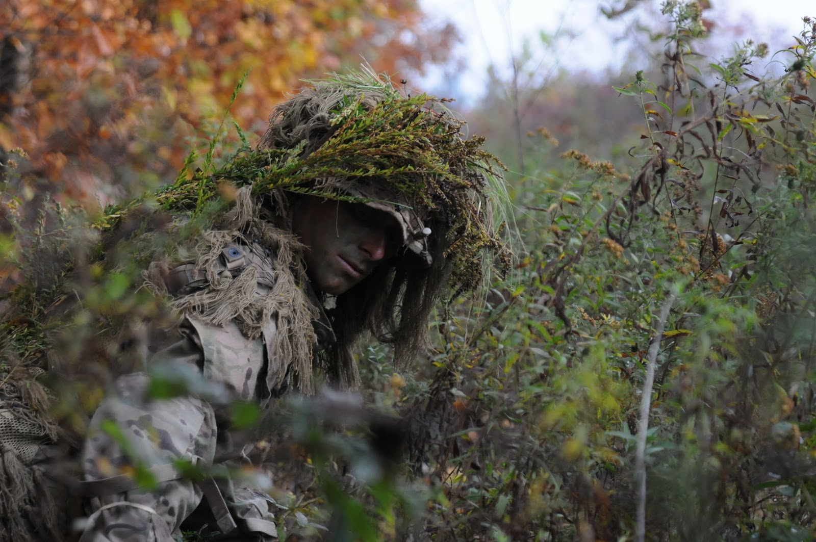 Similiar Scout Sniper Keywords