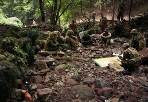 Bilateral Exercise Forest Light concludes