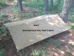 MVT Shield 9 - Why